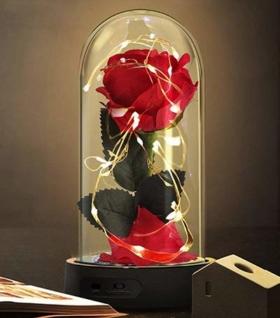 Ewige Rose in beleuchteter Glaskuppel